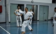 lezione-karate-20-settembre-2017-seishindo (18)