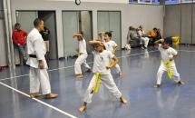 lezione-karate-21-settembre-2017-seishindo (10)