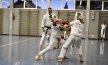 lezione-karate-21-settembre-2017-seishindo (15)