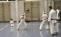 lezione-karate-21-settembre-2017-seishindo (17)