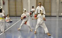 lezione-karate-21-settembre-2017-seishindo (18)