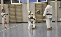 lezione-karate-21-settembre-2017-seishindo (24)