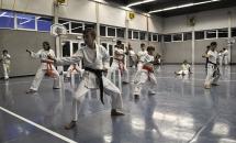 lezione-karate-21-settembre-2017-seishindo (7)