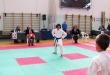 Gara  Taikioku 26 ottobre 2014 a Bagnatica / Seishindo