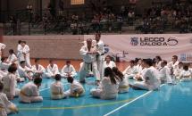 karate-esame-stage-2016 (12)