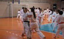 karate-esame-stage-2016 (13)