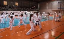 karate-esame-stage-2016 (17)