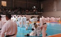 karate-esame-stage-2016 (19)