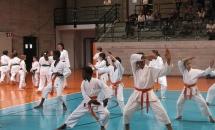karate-esame-stage-2016 (25)