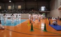 karate-esame-stage-2016 (26)
