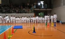 karate-esame-stage-2016 (6)