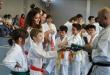 Esame di Karate Seregno 10 giugno 2013