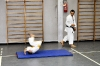 Foto 7 / Lezione  Karate / Giugno 2011