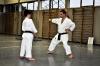 Foto 13 / Lezione  Karate / Giugno 2011