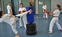 karate-lezione-2016-seishindo (10)
