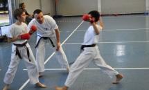 karate-lezione-2016-seishindo (14)