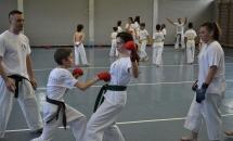 karate-lezione-2016-seishindo (15)