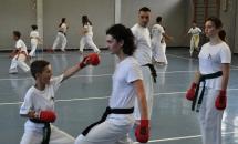 karate-lezione-2016-seishindo (16)
