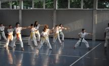 karate-lezione-2016-seishindo (19)