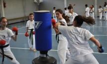 karate-lezione-2016-seishindo (2)
