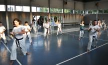 karate-lezione-2016-seishindo (20)