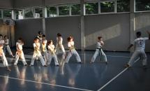 karate-lezione-2016-seishindo (24)