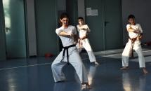 karate-lezione-2016-seishindo (27)