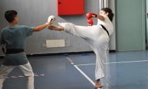 karate-lezione-2016-seishindo (28)