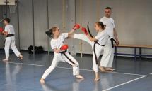 karate-lezione-2016-seishindo (29)