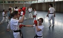karate-lezione-2016-seishindo (30)