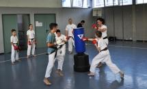 karate-lezione-2016-seishindo (34)