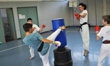 karate-lezione-2016-seishindo (4)