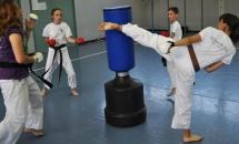 karate-lezione-2016-seishindo (5)