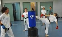 karate-lezione-2016-seishindo (9)