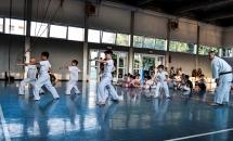 Lezione karate 8 giugno 2017