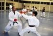 Foto 2 / Lezione  Karate / Novembre 2013