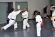 Foto 4 / Lezione  Karate / Novembre 2013