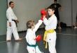 Foto 7 / Lezione  Karate / Novembre 2013