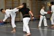 Foto 10 / Lezione  Karate / Novembre 2013