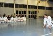 Foto 11 / Lezione  Karate / Novembre 2013