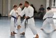 Stage  Karate con maestri F. Raimondo e P. Ornaghi / Ottobre 2014 / Seregno