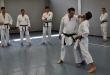 Stage Karate 10 Maggio - Seregno