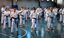 stage karate 26 novembre 2017 (11)