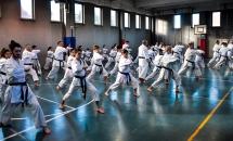 stage karate 26 novembre 2017 (12)