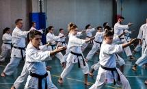 stage karate 26 novembre 2017 (13)