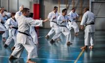 stage karate 26 novembre 2017 (14)