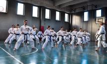 stage karate 26 novembre 2017 (17)