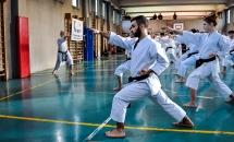 stage karate 26 novembre 2017 (27)