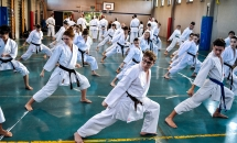 stage karate 26 novembre 2017 (28)