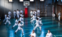 stage karate 26 novembre 2017 (30)